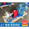 KCB-200不锈钢齿轮泵,油炸食品专用油泵