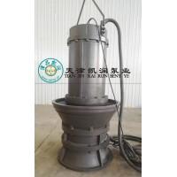 潜水轴流泵-天津凯润泵业